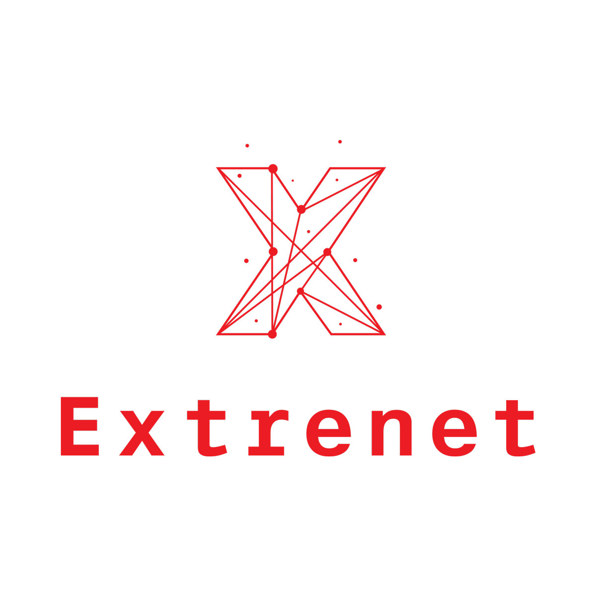 Extrenet, Consultoría Tecnológica en Extremadura, Servicios a empresas, Tecnología, Informática e Internet